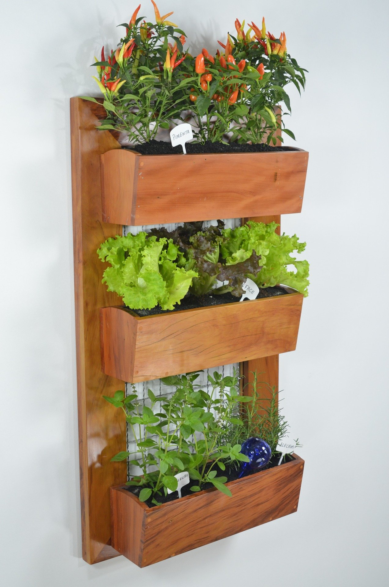 A Quick Guide To Small Space Gardening