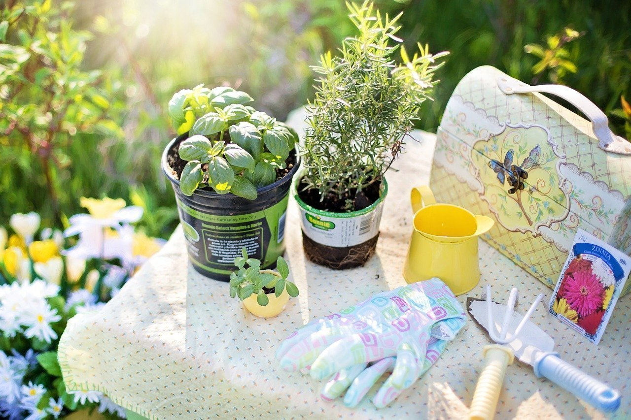 7 Useful Tools That Can Help You In Gardening