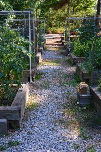 black run farms and gardens