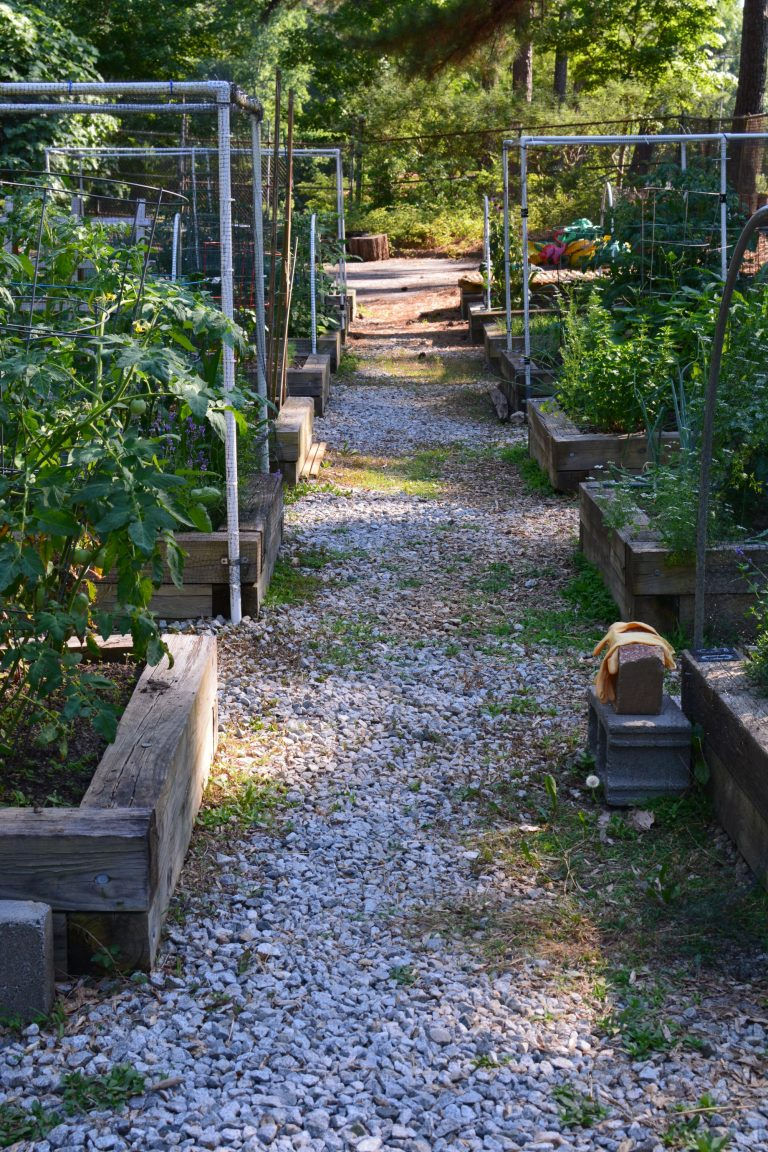 black run farms and gardens