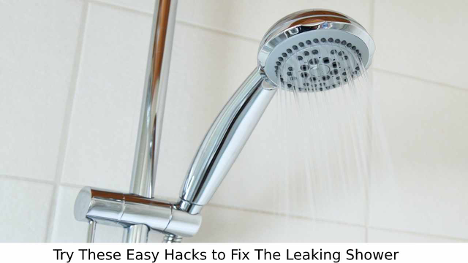 fix the leaking shower