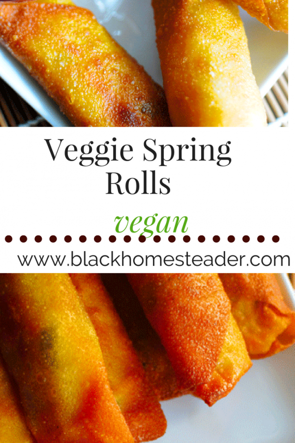 veganspringrolls_pin